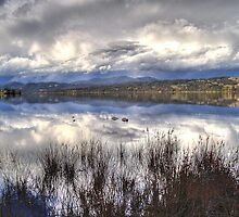 Huon reflections by gibbut