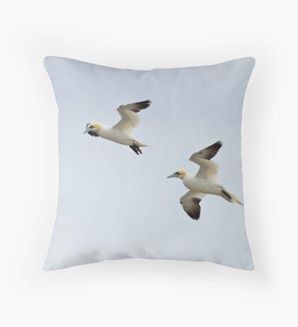 Gannets in flight Throw Pillow