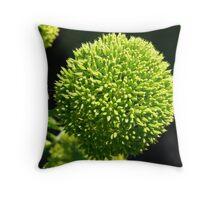 ball of green Throw Pillow