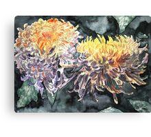 chrysanthemum flower watercolour painting Canvas Print