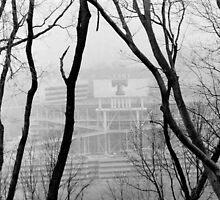 Neyland Stadium by Brian Murray