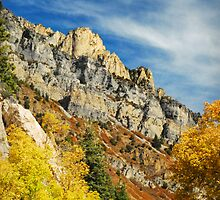 American Fork Canyon - October Colors by Ryan Houston