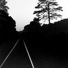 Night Tracks by Brian Murray