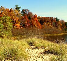 Duck Lake Colors by BarbL