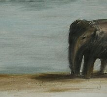 Lonely Elephant. by Jessica Hoeck