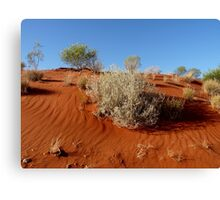 Red Sand Dune Canvas Print