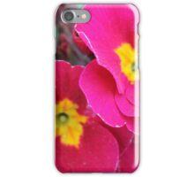 Cerise Primula - Abingdon, Oxfordshire iPhone Case/Skin