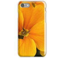 Yellow Primula - Abingdon, Oxfordshire iPhone Case/Skin