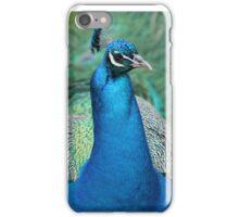 Peacock - Harcourt Arboretum, Oxfordshire iPhone Case/Skin