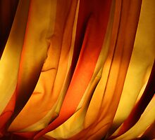 the shape of fabric by Ann Marie Donahue