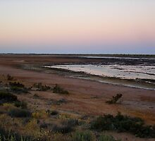 The Desert Estuary At Sunrise by Miesha