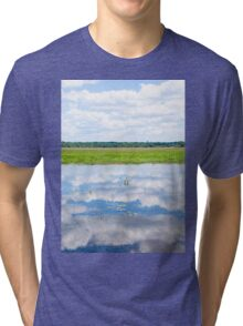 Florida Beauty 2 Tri-blend T-Shirt