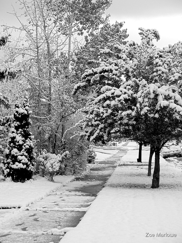 First Snow Of The Season by Zoe Marlowe