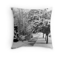 First Snow Of The Season Throw Pillow