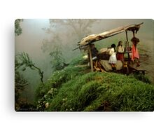Colombian Road Stand Canvas Print