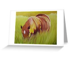Horse eating in  tall grass. Greeting Card