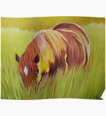 Horse eating in  tall grass. Poster