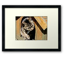 Who`s There! Framed Print