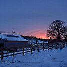 Sunset by Lynne Prestebak