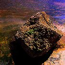 Light and colour in a Coastal Rock Pool by Ian Alex Blease