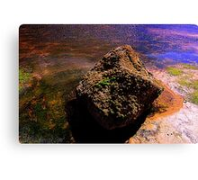 Light and colour in a Coastal Rock Pool Canvas Print