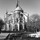 Jardin de Notre Dame, Paris by maddie5