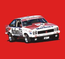 1979 A9X Torana Hatchback - Bathurst / Brock by inmotionphotog