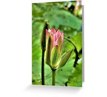 Glow... Greeting Card