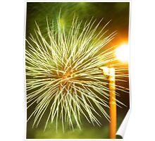 Nightly Fireworks Poster