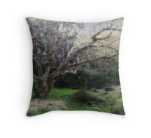 You Will Believe In Me Throw Pillow