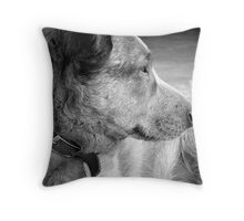 Heeler Royality Throw Pillow