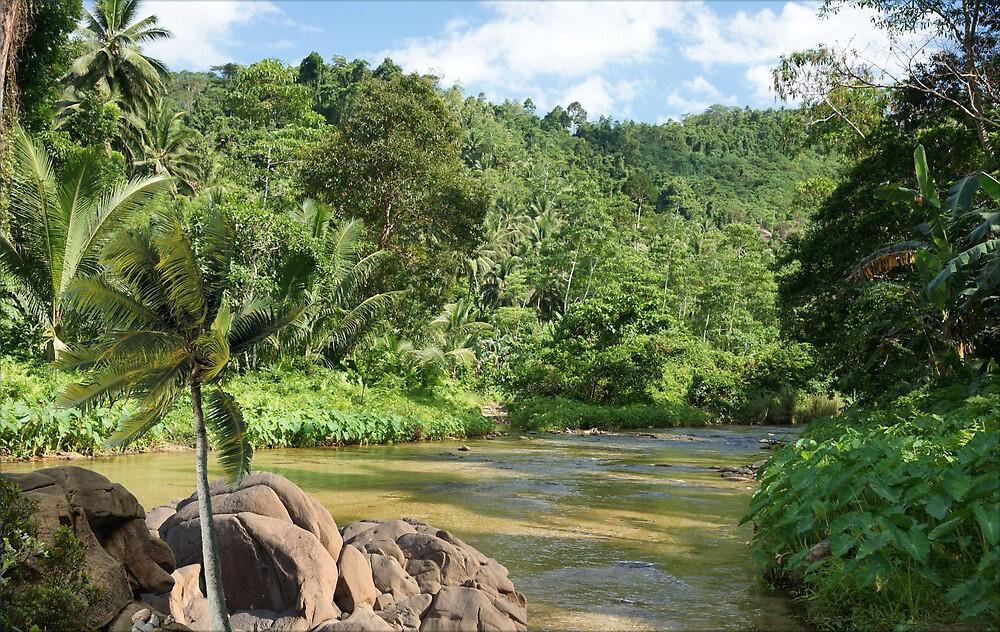 1364-XL-Amazon Jungle Spirit by George W Banks
