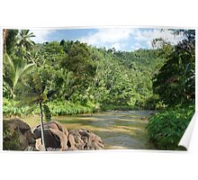 1364-XL-Amazon Jungle Spirit Poster