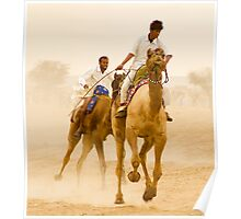 Camels of Rajasthan Poster