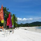 Beach Flags by Mike Paget