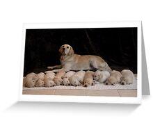 ten puppies 2 Greeting Card