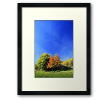 Summer pastel in vivid colors. Framed Print