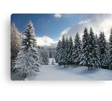 White Winter Glade. Canvas Print