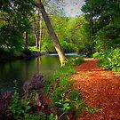 Sunday walk..... by DaveHrusecky