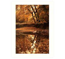 Autumn mirror lake. Art Print