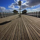 Penarth Pier by Edward Bentley