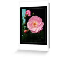 """""""The rose speaks of love silently, in a language known only to the heart."""" Greeting Card"""