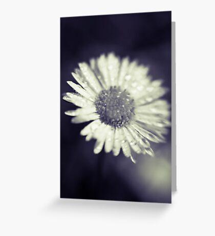 I heart daisies Greeting Card