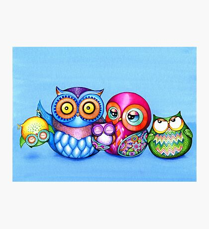 Funny Owl Family Portrait Photographic Print
