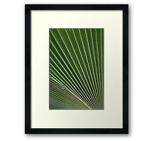 Green point of view... Framed Print