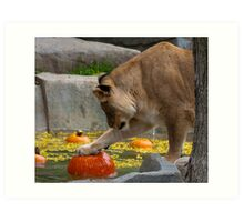A Lion's Pumpkin Party Art Print