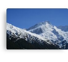 Snow and Ice Canvas Print