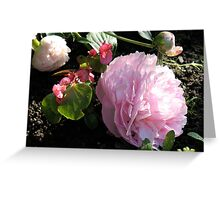 Pink Peony and Friends Greeting Card