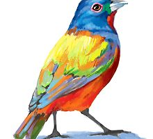 Painted Bunting - Colorful Bird by Cori Redford