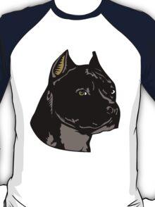PIT BULL-4 T-Shirt